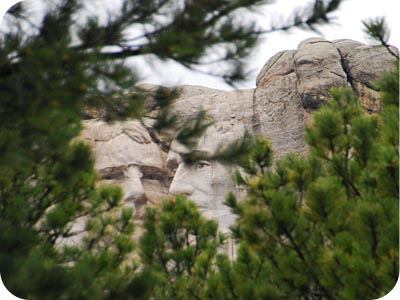 Mount Rushmore Trees