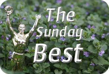 The Sunday Best
