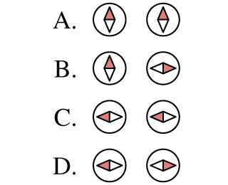 Which of the arrangements of two compasses shown in the