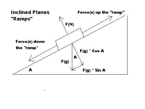 force body diagram