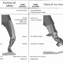 Pivot Joint Diagram 2002 Chevy Suburban Stereo Wiring Anterior Cruciate Ligament (acl) Injury - Physiopedia