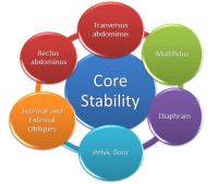 The effectiveness of core stability exercise with regards