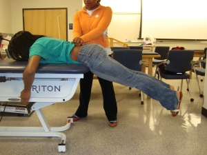 Prone Instability Test  Physiopedia universal access to