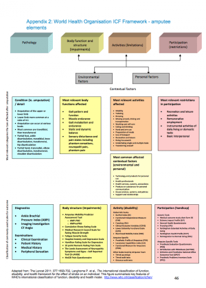Assessment of the amputee  Physiopedia