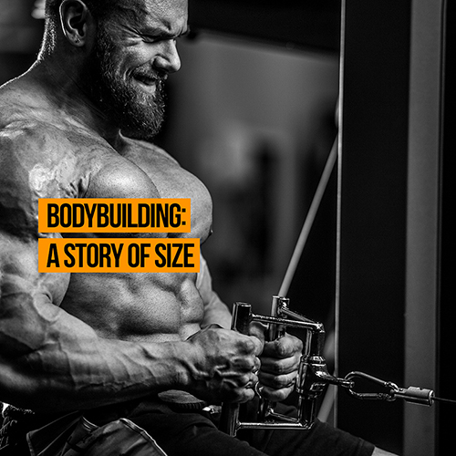Bodybuilding A Story Of Size Physioroom Blog