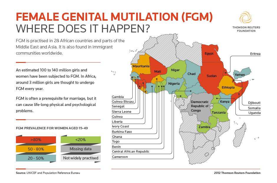 Image result for female genital mutilation