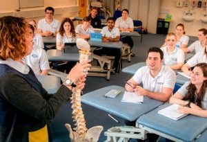 physiotherapy education