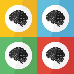 Brain icon ( flat design ) on different color background ( lateral view ) Use for Brain disease ( ischemic stroke , hemorrhagic stroke , brain tumor , etc )