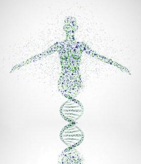 Skoliosetherapie - Spiraldynamik - Entwicklung von Körperbewusstsein
