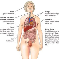 Where Is Your Gallbladder Diagram Human Foot Skeleton Labeled Myocardial Infarction Treatment