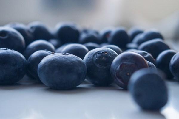 Pourquoi l'ajout de bleuet sauvage au gingko biloba et au Cereboost (ginseng américain)