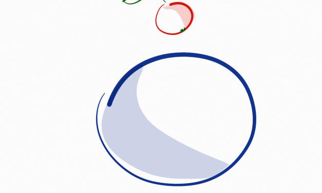 Newtons Gravitationstheorie