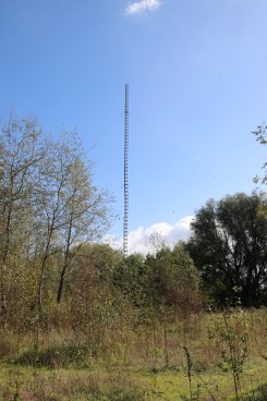 1/4 vertical for 3.5 Mhz