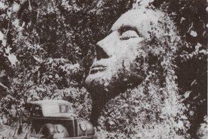 testa di pietra