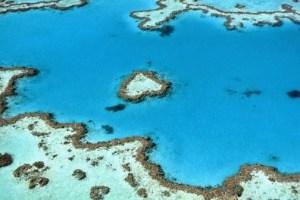 Grande-Barriera-Corallina-sbiancamento