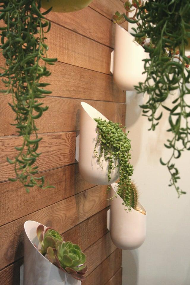 Bastano delle belle piante e delle originali fioriere per cambiare. Fioriere Da Parete Design Moderno