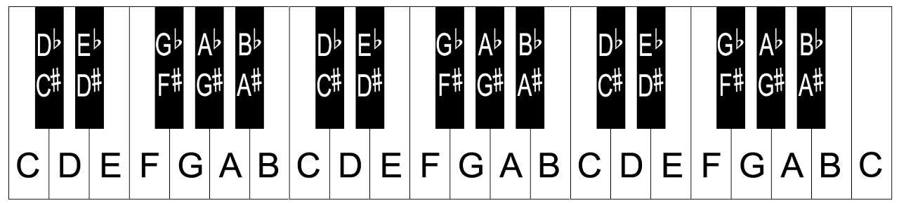 notes on piano keyboard diagram true and false pelvis layout/notes