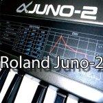 Roland Juno-2Large Bibliothèque de sons et Monteurs sur CD