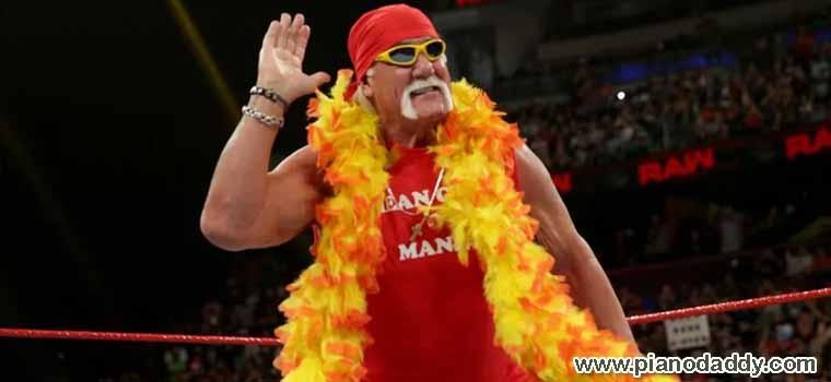 Hulk Hogan Theme Song (WWE)