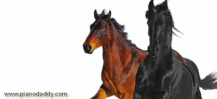 Old Town Road (Lil Nas X)