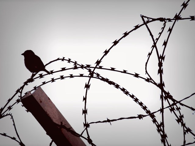 Allarme ai Naviganti: Border Tax in gestazione