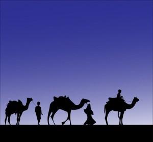 camel-316894_640