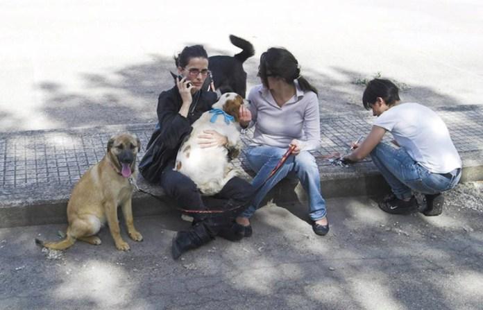 edwige monte con altre volontarie in attesa di consegnare i cani ai nuovi proprietari