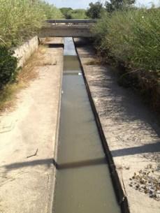 Canale dei Samari - in questo punto tra il ponte che porta ai parcheggi dei lidi (sullo sfondo) e il ponte sulla litoranea si verifica la presenza di acqua putrida