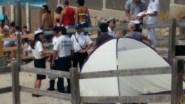 L'intervento dei vigili e degli uomini della Capitaneria di porto
