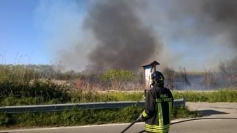 incendio li foggi (17)