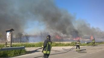incendio li foggi (18)
