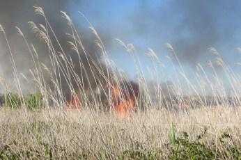 incendio2 (23)