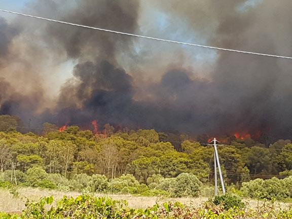 incendio-torre-mozza-12.8.16-foto-Roberto-Gennaio-(6)