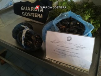 Pesce sequestrato (1)