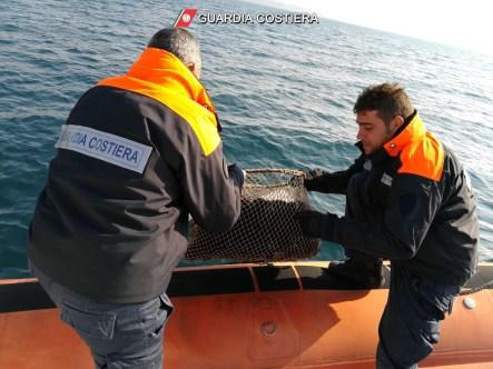Guardia costiera e sequestro ricci di mare