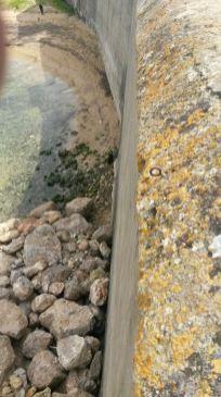 Gallipoli Purità 31 marzo 18 la sabbia torna
