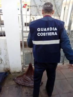 Guardia costiera sequestro calamari