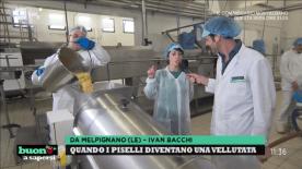 Valentina Avantaggiato e Ivan Bacchi