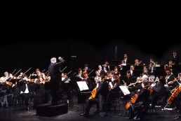 Hungarian International Orchestra