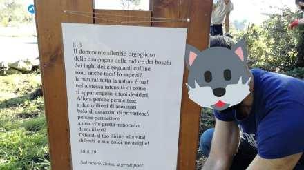 La poesia di Salvatore Toma