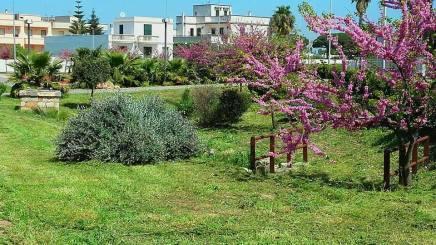 Taviano, i giardini dedicati alla prof.ssa Marinella Cacciatore