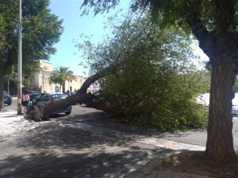 Piazza Umberto I, Casarano, la sede stradale ostruita