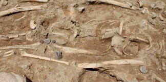Ritrovamenti archeologici a Ugento