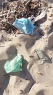 """""""nuovi """" rifiuti abbandonati in riva al mare"""