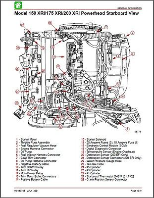Mercury 200 Outboard Wiring Diagram. Mercury. Wiring