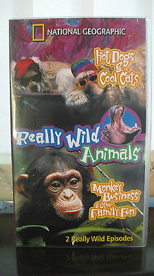 Cats And Dogs Special Edition VHS Video Tape 200