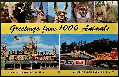 Roadside Attraction: Sterling AK Animal Farms, Lake Placid & Ausable Chasm, NY.