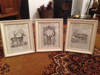 VINTAGE Shabby Chic Feature Wall Art Images Stag Deer X3 ...
