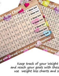 Weight loss chart stone journey no stickers also rh picclick