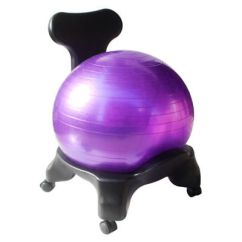 Gaiam Balance Ball Chair Exercises Tall Kitchen Table And Chairs Exercise Stability Yoga Premium Ergonomic